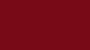Logo-primmo